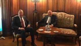 Egipto pide adoptar medidas para preservar la seguridad de Siria