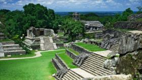 Descubren una enorme carretera maya construida hace 1300 años