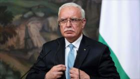 Palestina pide a UA que revoque estatus de observador a Israel