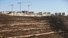 """""""Israel usa tierras palestinas como vertedero de sus desechos"""""""