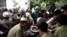 ONU advierte sobre grave crisis alimentaria en Afganistán
