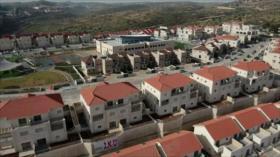 No más colonias: Palestina condena robo de su tierra por Israel